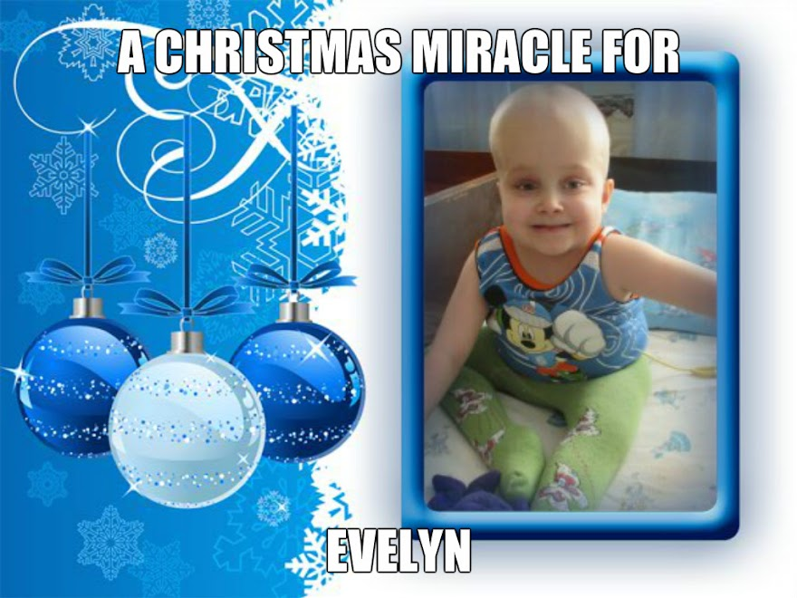 A Christmas Miracle for Evelyn