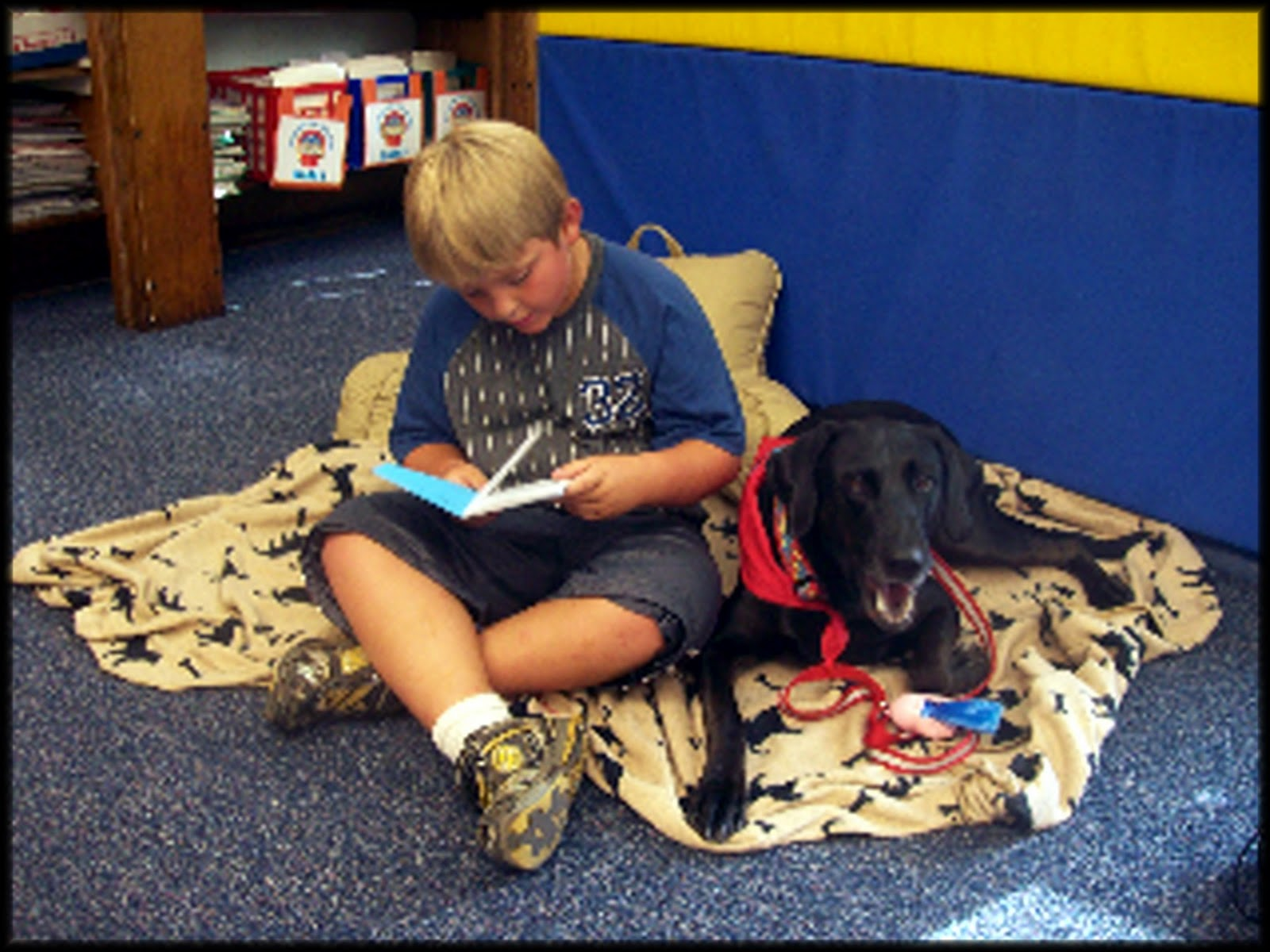 Psychiatric Service Dog Training Requirements