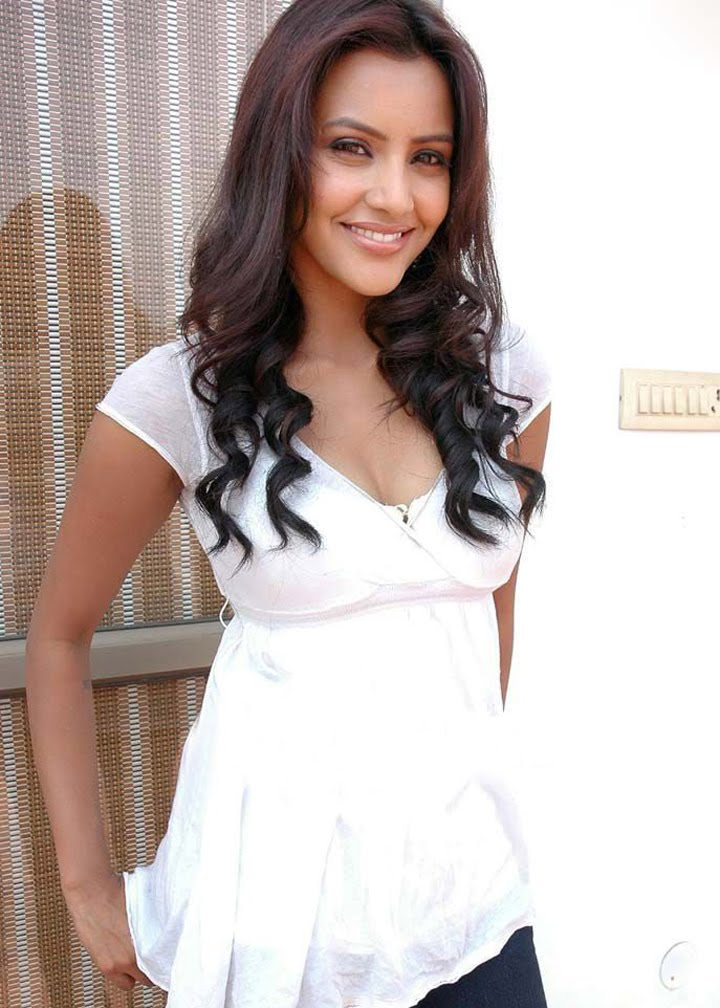 is the indian actress as well model in the tamil and talgu movies