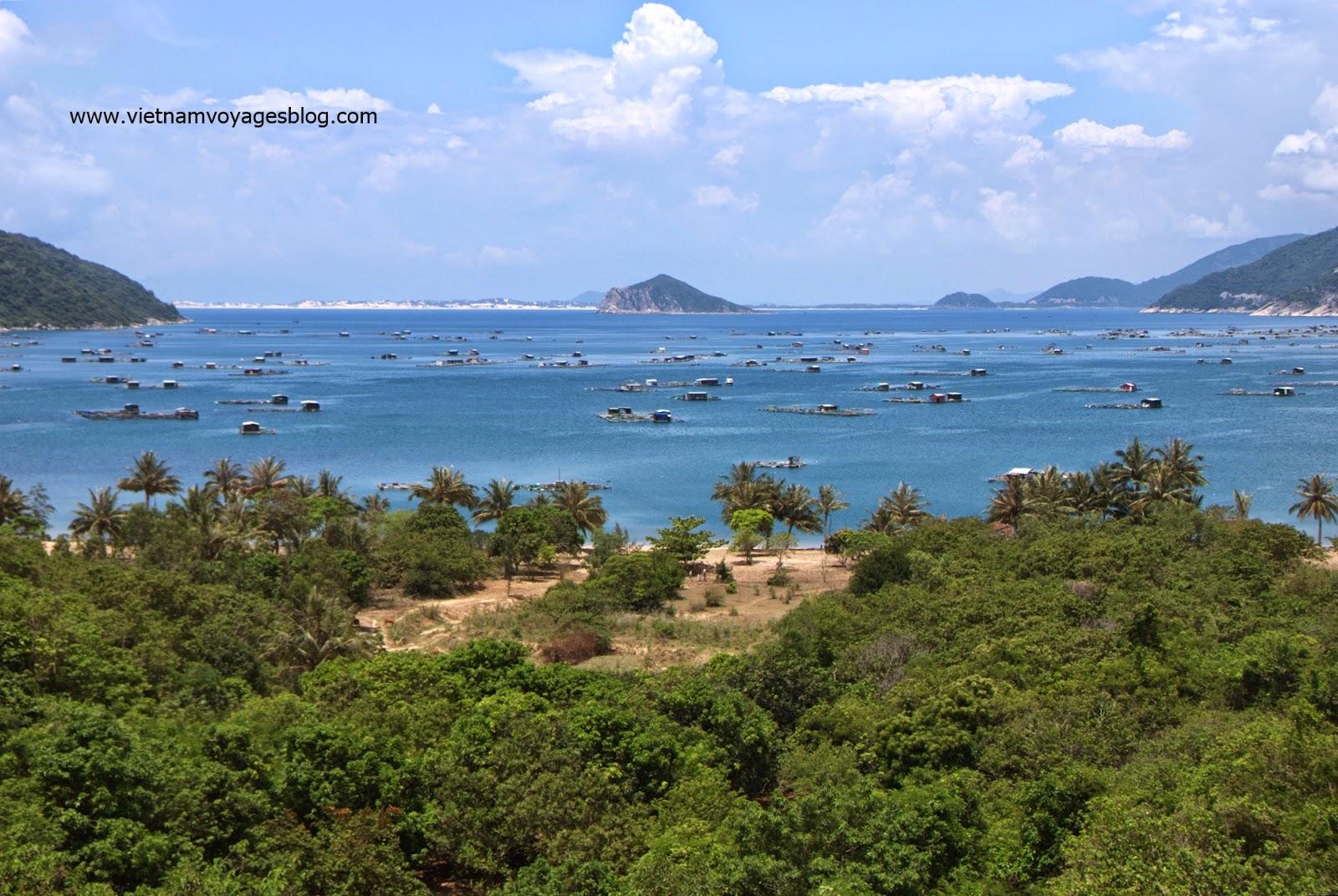 Nuôi cá bè ở Vịnh Vũng Rô, Phú Yên 2014
