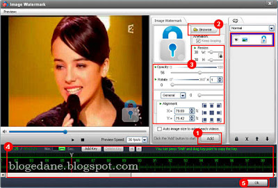 Free Download Video Watermark Pro 2.3 Version + license