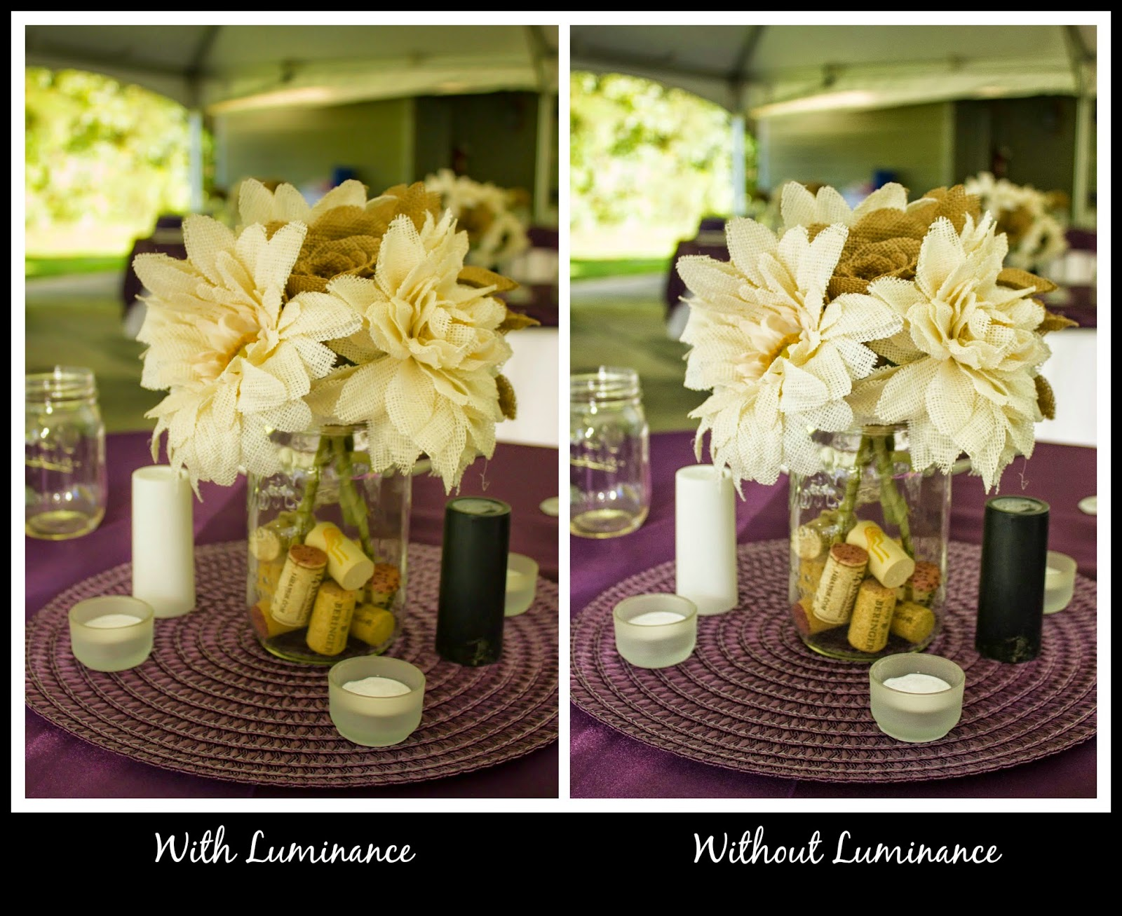 how to use the luminance feature in lightroom, luminance tutorial, beginner lightroom, wedding bouquet, white wedding bouquet, white flowers at wedding, white balance, white balance in lightroom, wedding photography