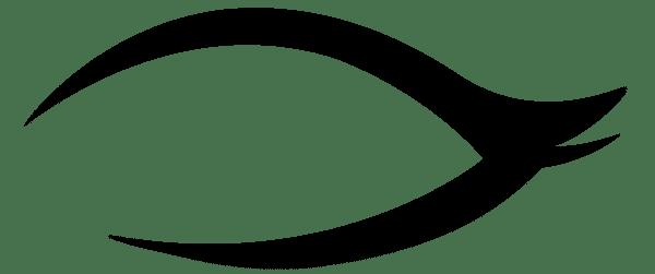 Eyeliner Png Pack Sticker Line Camera