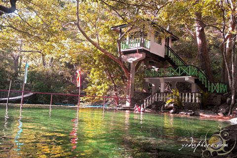 Old swimming pool and tree house cottage at Calawagan Resort