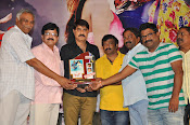 Dhee Ante Dhee audio platinum disk-thumbnail-11