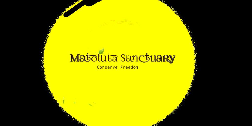 Matoluta Sanctuary