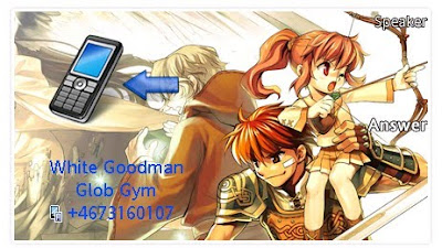 網上遊戲「瑪奇」SonyEricsson手機主題for Aino﹝240x432﹞