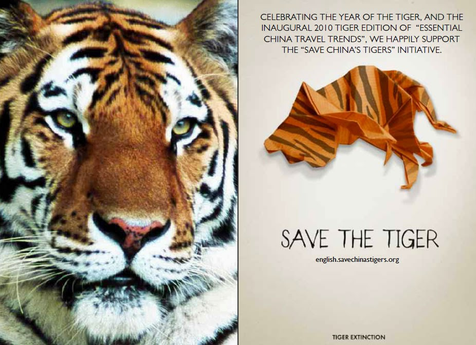tigers essay Tigers essaythe tiger, largest of all cats, is one of the most charismatic and evocative species on the earth tiger is also one of the most threatened.