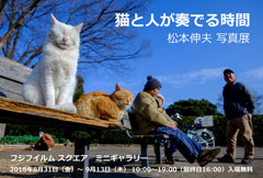 【 ありがとうございました 】<br> 松本伸夫 写真展<br> 猫と人が奏でる時間