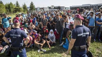 Says PM Milanovic, Croatia moving migrants towards Hungary