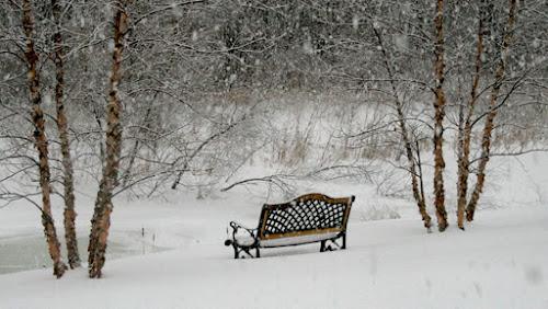 Gambar Musim salju indah
