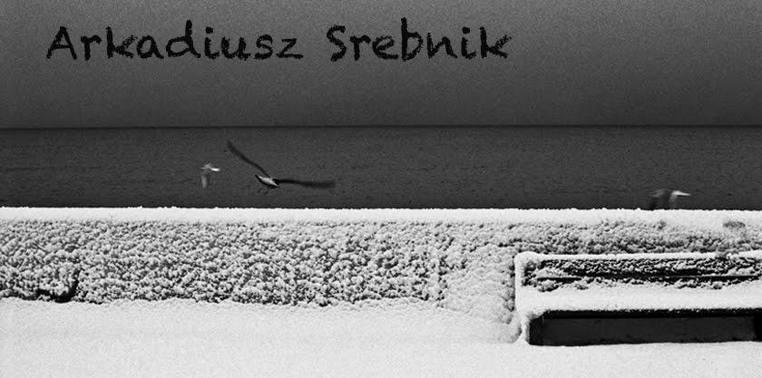Arkadiusz Srebnik Blog