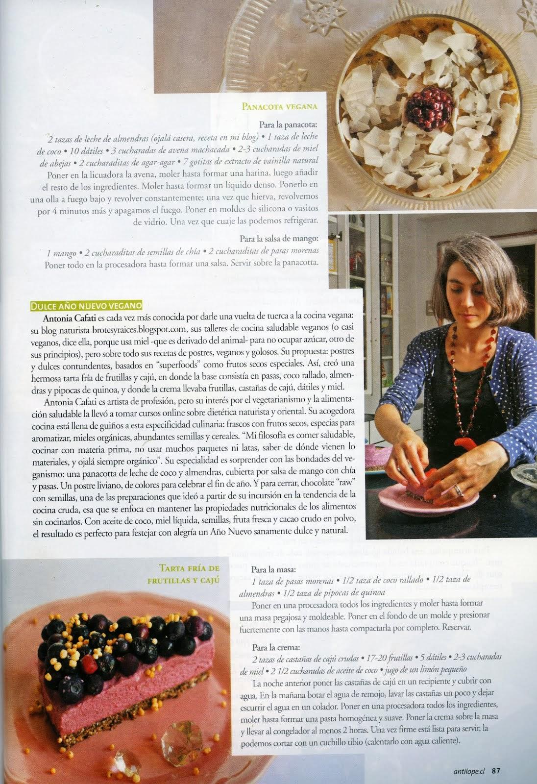 Revista Antílope Diciembre/2013