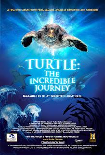Hành Trình Vĩ Đại Của Loài Rùa - Turtle The Incredible Journey