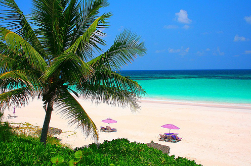 Pink sands beach for Bahamas pink sand beaches