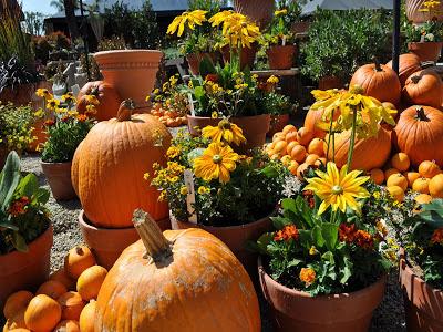 31 októbra večer sa začína halloween