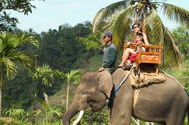 True Balinese Experience Elephant Ride Short Trek