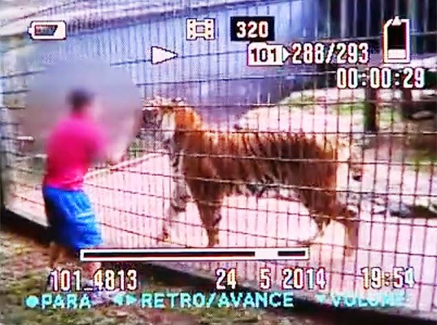 O garoto foi atacado na ultima quarta-feira em no zoológico da cidade de Cascavel (PR)
