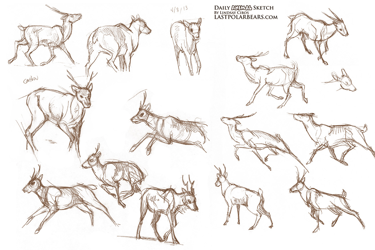 daily animal sketch wolves and caribou