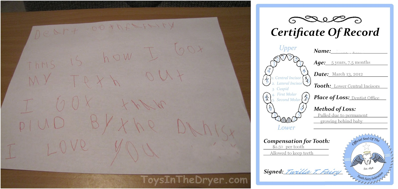 Free tooth fairy certificate yelopaper Choice Image
