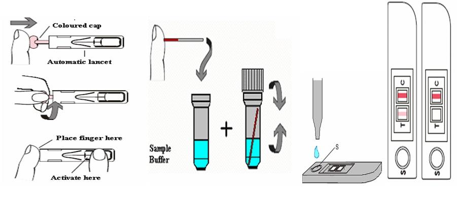 Risultati immagini per biocard celiac test