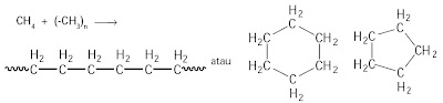 senyawa karbon rantai panjang atau siklik