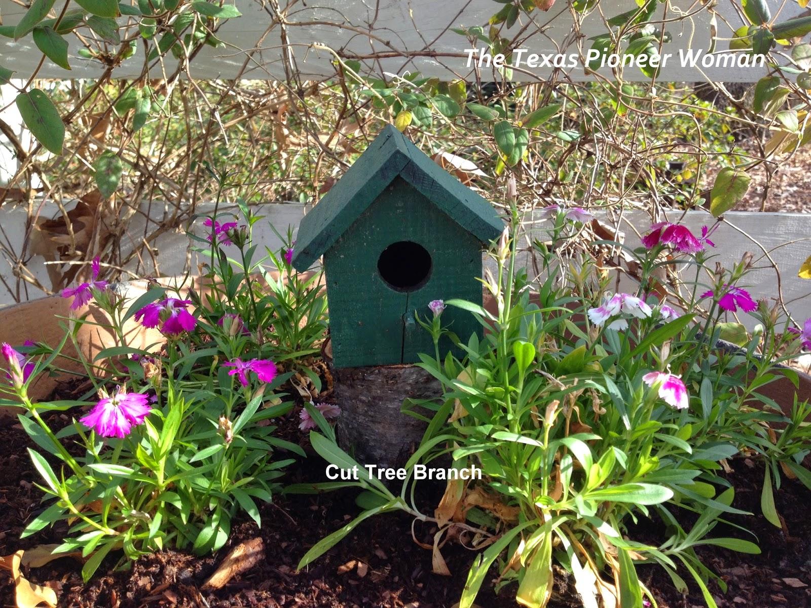 frugal flower garden ideas