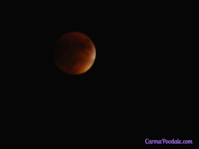 #SuperBloodMoon eclipse