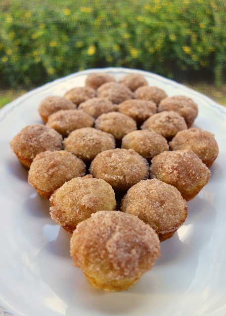 Mini Applesauce Muffins | Plain Chicken
