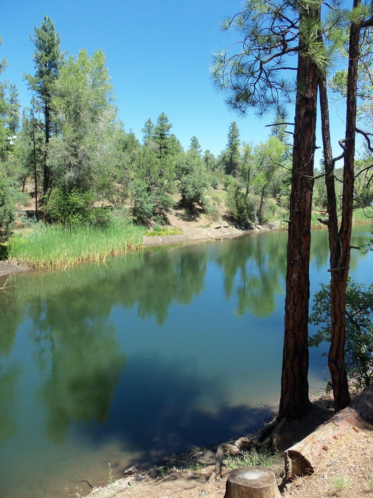 Natural Valley Bars Gluten Free