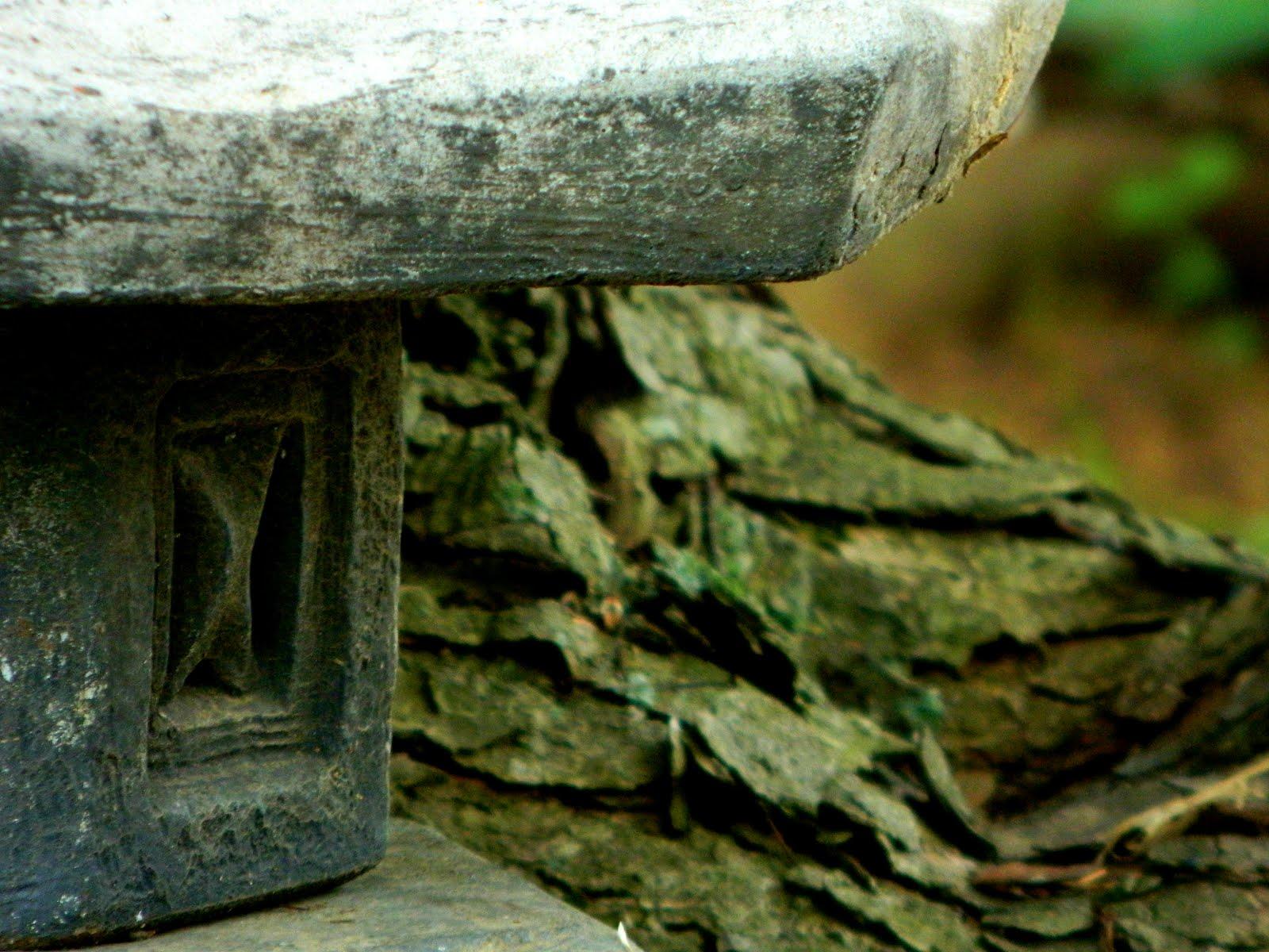 Japanese Lantern Detail