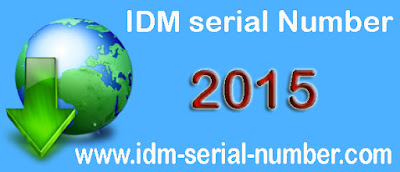 IDM 6.25 build 6 Crack and serial number 100% working