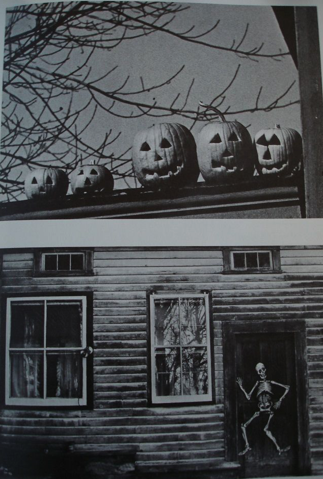 http://bellyacherecords.bandcamp.com/track/trail-of-jack-o-lanterns