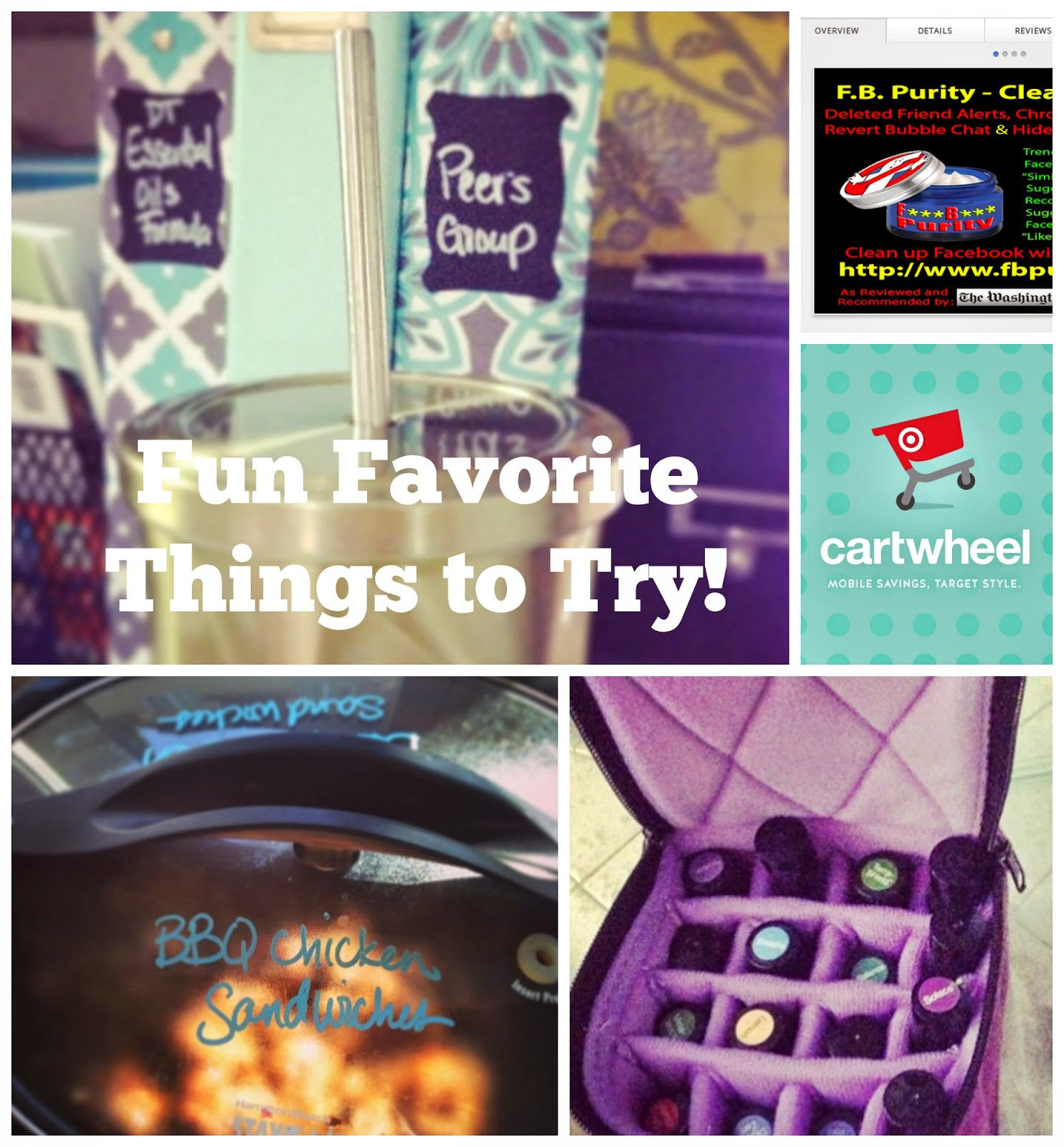 Fun Favorite Things to Try -- stainless steel straws, crockpot, cartwheel app, essential oil travel case, and FB purity :: OrganizingMadeFun.com
