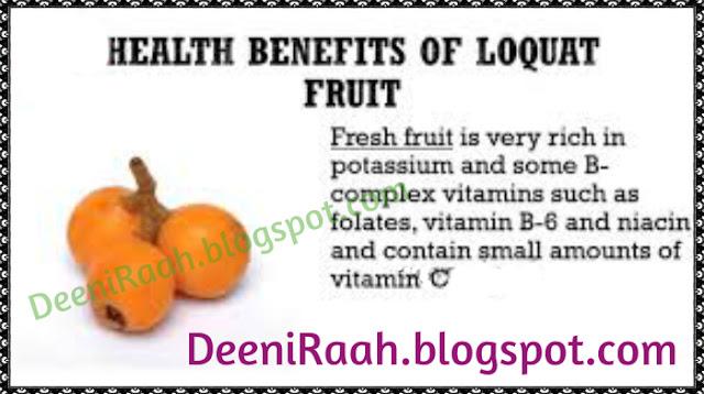 Health Benefits of Loquat Fruit