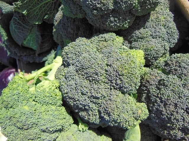 Brócolos, alimentos ricos em ferro e vitamina k.