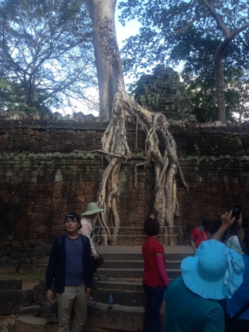 The temple of Ta Phrom has been used in the Tomb Raider movies