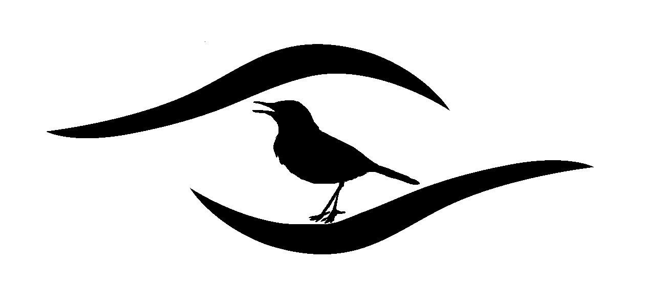Grupo de Ornitologia e Birdwatching - ONG MAE