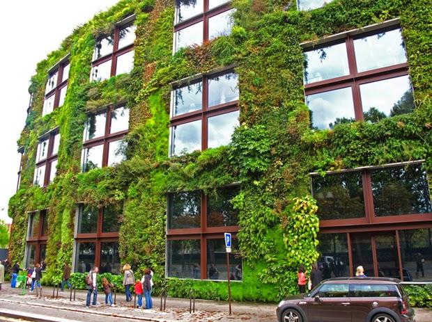 jardim vertical urbano:Bio Natusflora Paisagismo e Jardinagem: Jardins verticais