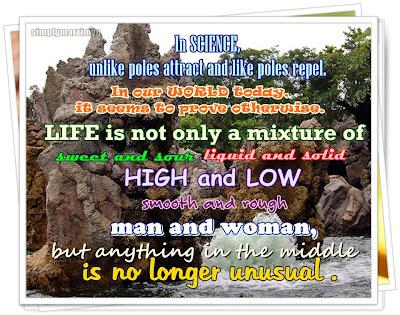 mye domain's photo_like poles attract