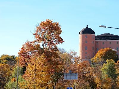 autumn-trees-around--uppsala-slott-photo-by-susan-wellington