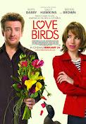 En Busca del Amor (2011)