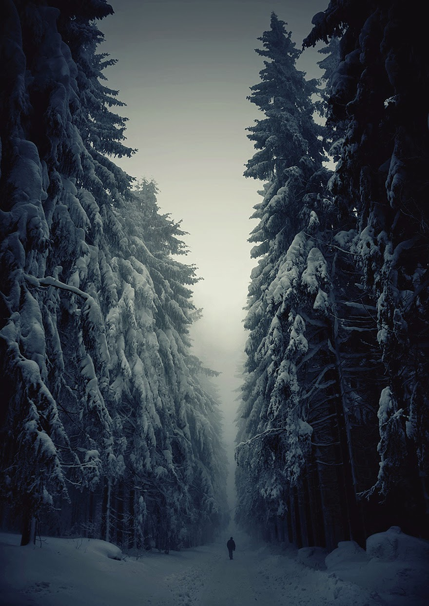 beauty of winter season-2