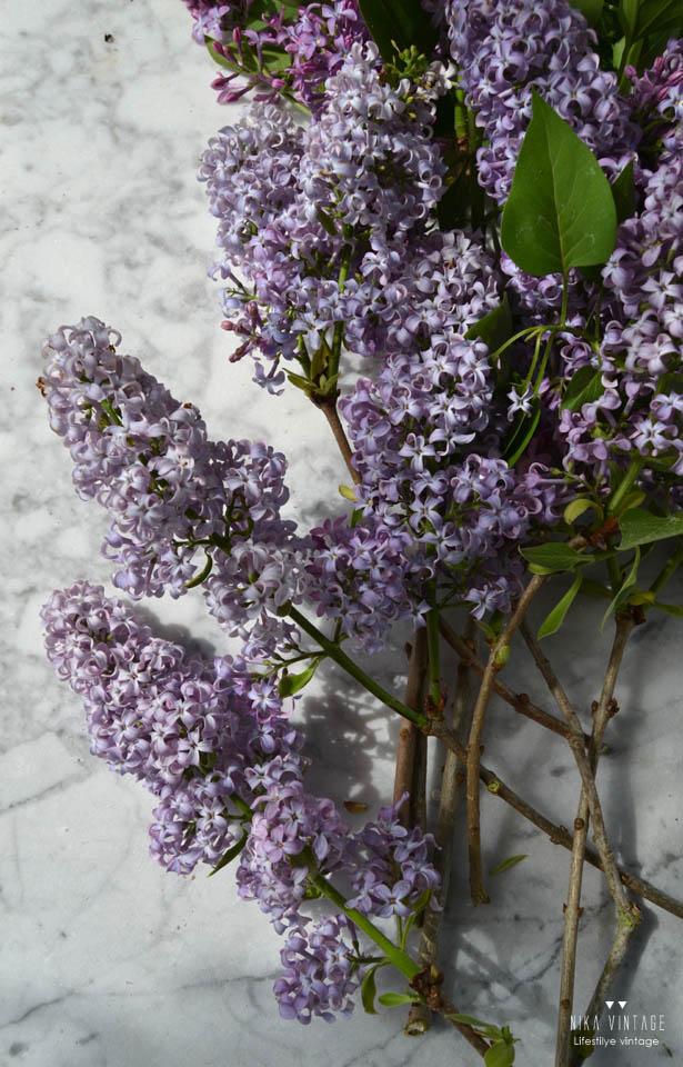 lilas, flores, primavera, jarra, composicion, ramo, aroma,
