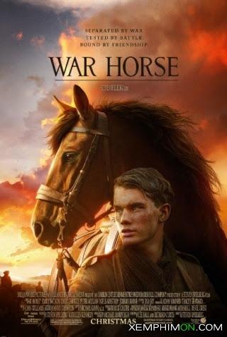 Ngựa Chiến HD