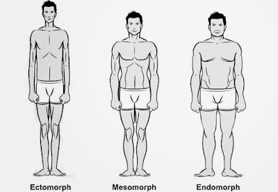 What is your body type ?, there are three types