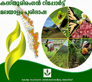 http://www.keralacm.gov.in/images/stories/topnews/2013/November/hlwg_part_one.pdf