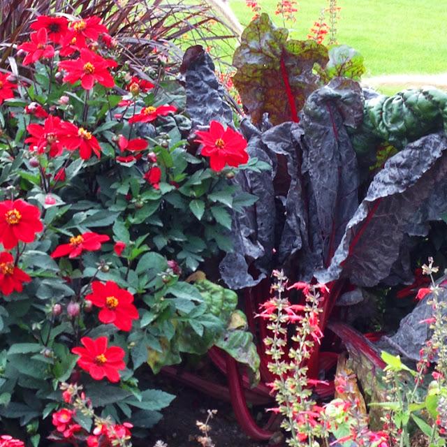Grønsager blandt blomster