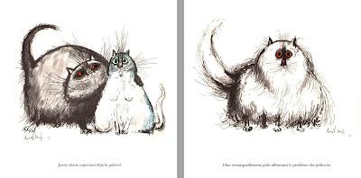 De drôles de chats