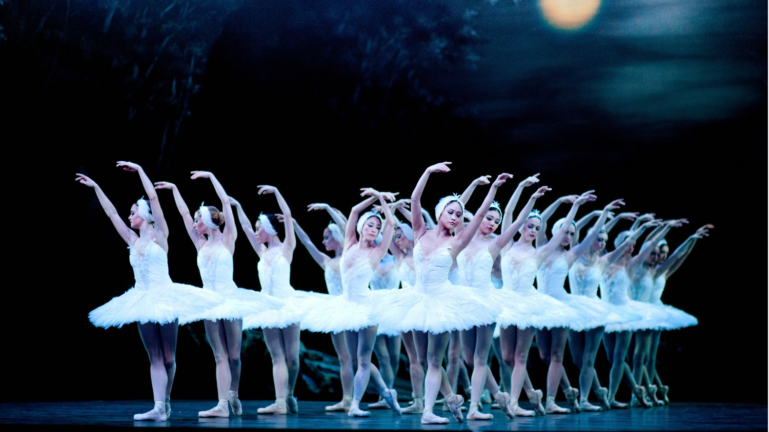 Swan Lake English National Ballet at the Coliseum